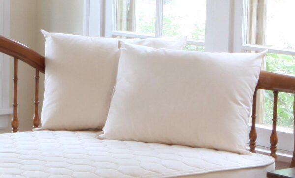 Organic Cotton/Organic Kapok Pillow
