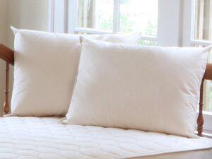 Organic Cotton/PLA Pillow
